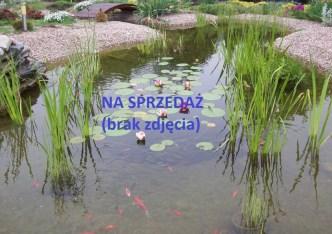 działka na sprzedaż - Parzęczew, Ignacew Folwarczny